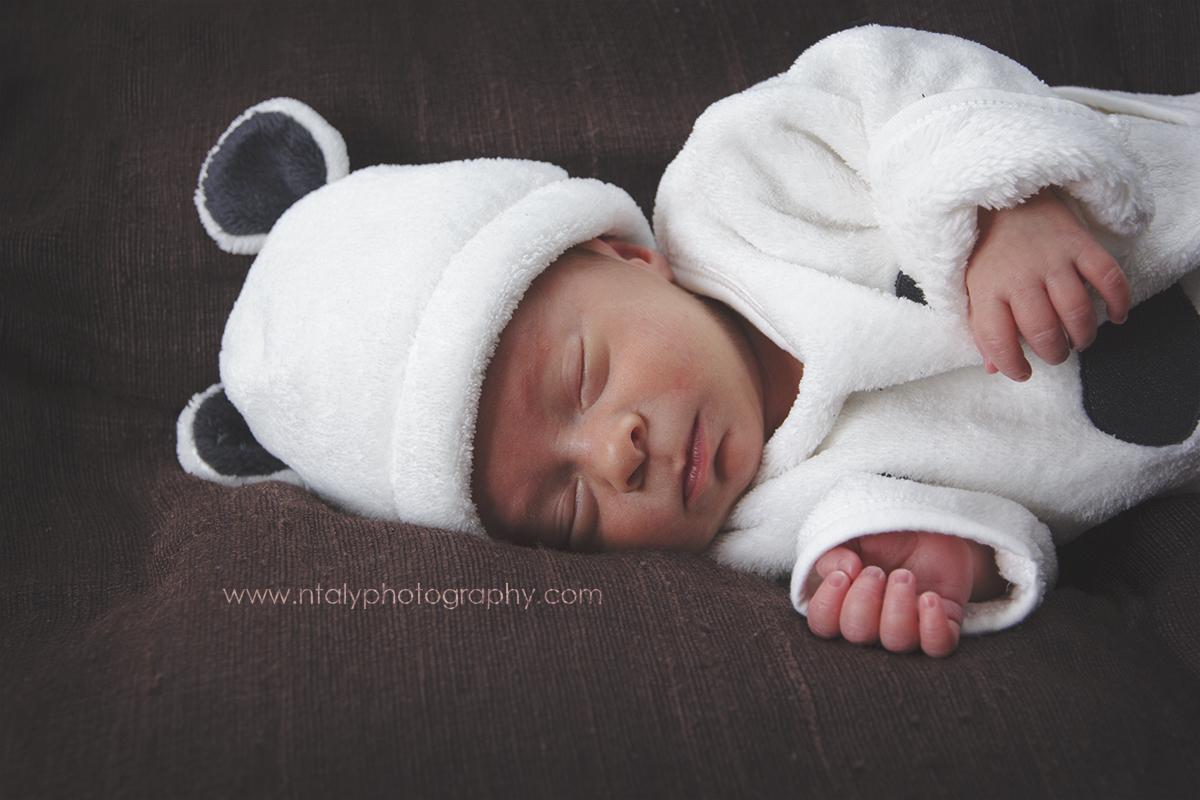 dodo paisible mignon bebe nourrisson nouveau ne photographe famille