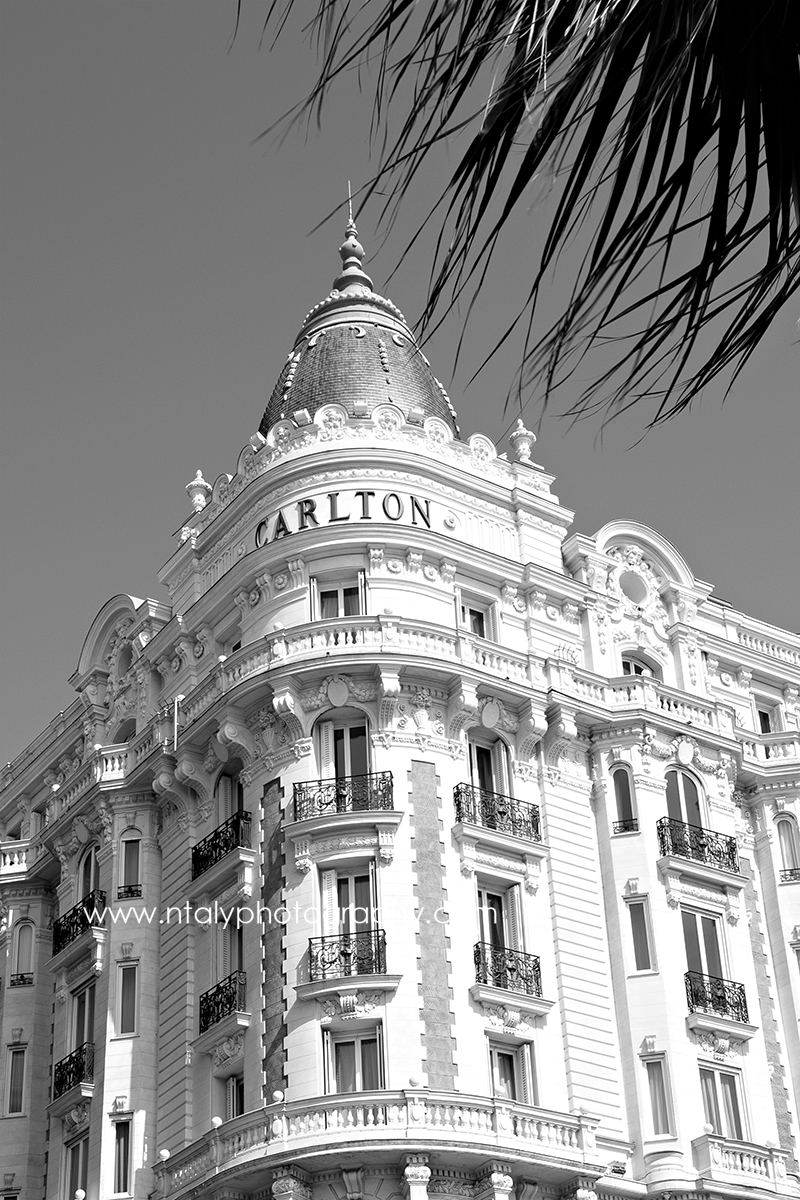 photo cannes le carlton