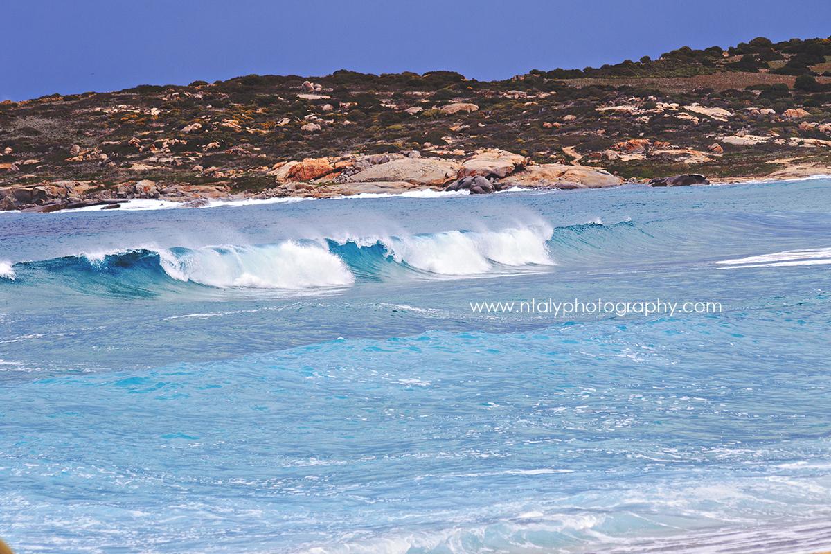 vague corse surf