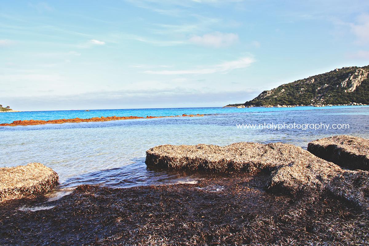 plage santa giulia corse sable blanc eau turquoise