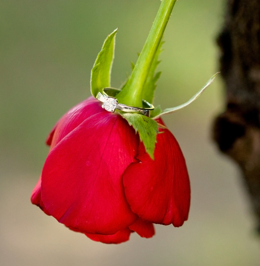engagement fleur romantique