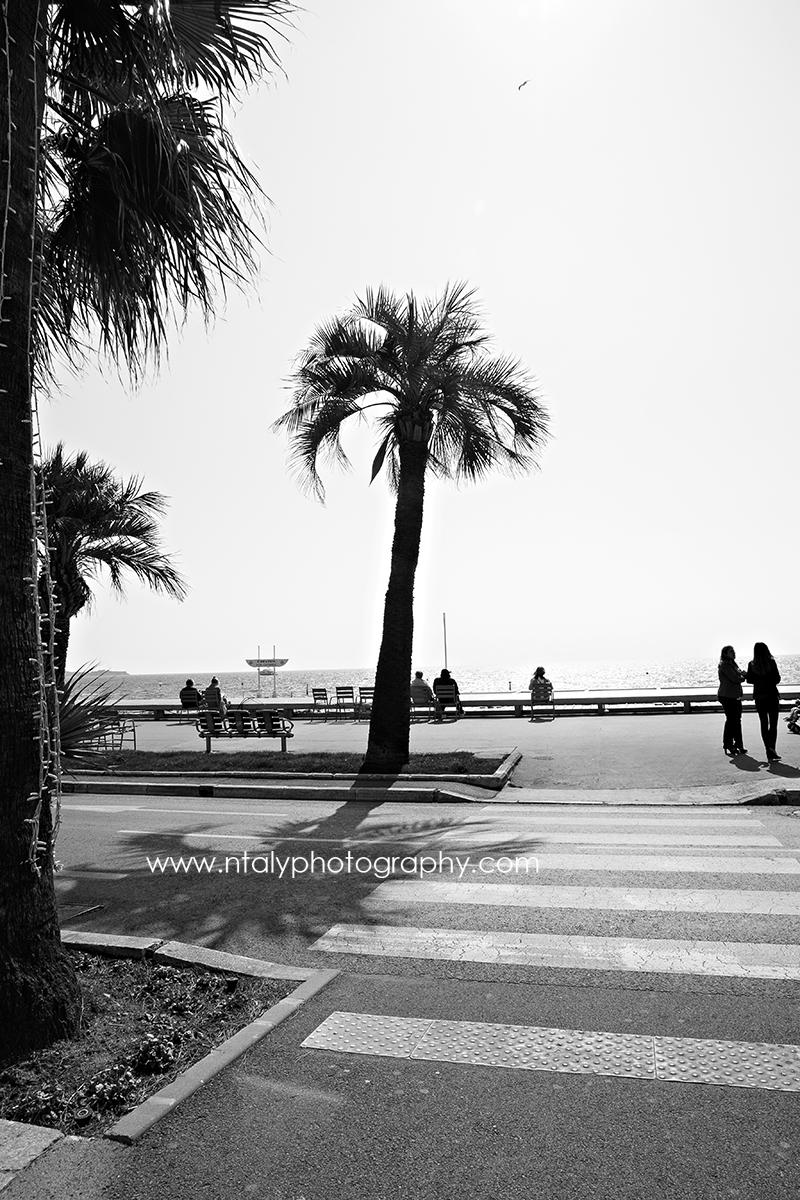 photo noir et blanc la croisette cannes